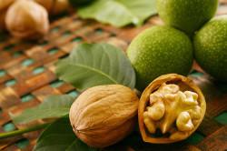 Грецкий орех для лечения миомы матки